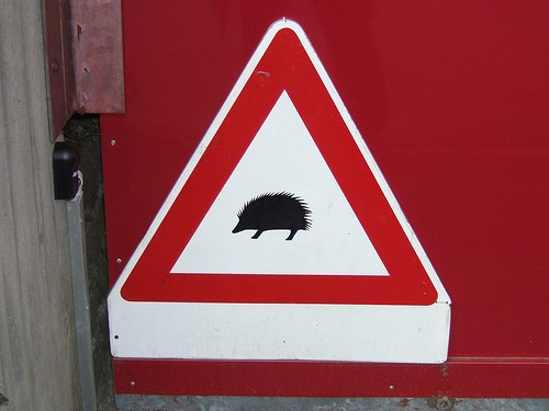 hedgehogcaution